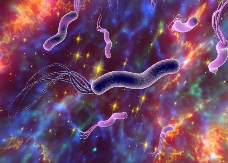 krankheiten - seite 8 - heilpraxis
