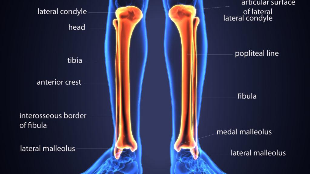 Schmerzen in den Beinen können vor Herzinfarkt warnen