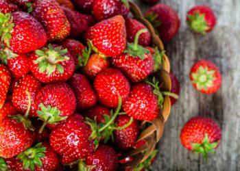 Frische Erdbeeren aus regionalem Freilandanbau gibt es zwischen Mai und Juli. (Bild: alicja neumiler/fotolia.com)