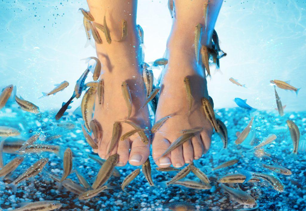 Urlauberin verliert nach Fisch-Pediküre fünf Zehen