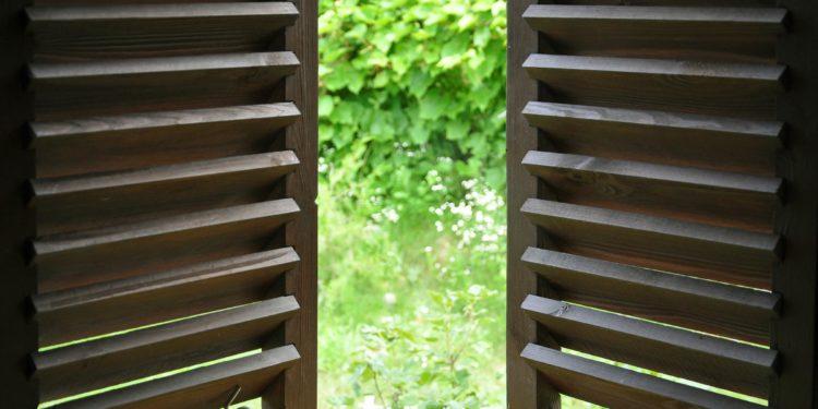 Ein halb geöffnetes Fenster mit Blick auf die Natur.