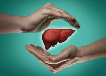 Die Leber kann sich regenerieren, wenn sie nicht durch die falsche Lebensführung daran gehindert wird. (Bild: svetazi/fotolia.com)