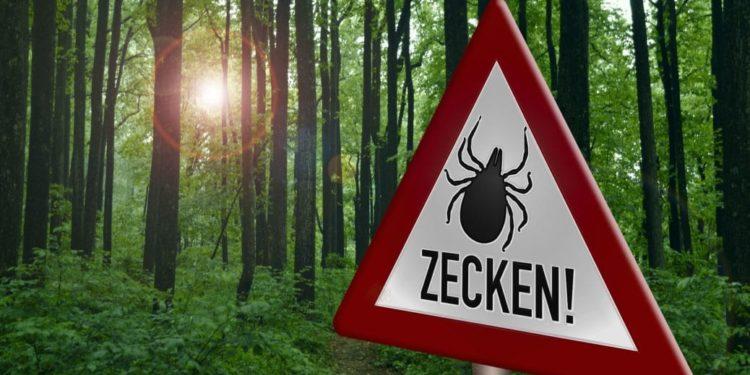 Zeckenwarnschild am Waldwanderweg