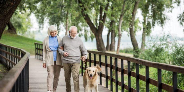 Ein älteres Paar geht mit dem Hund spazieren