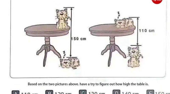 Skizze eines chinesischen Mathematikrätsels mit Katzen