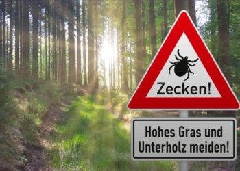 Warnschild vor Zecken vor Waldidyll