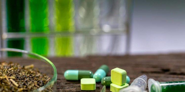 Verschiedene Kräuter und Pillen liegen auf einem Tisch