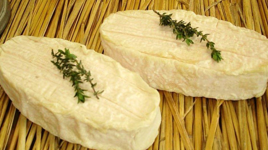 Weichkäse aus Frankreich ist mit Salmonellen belastet