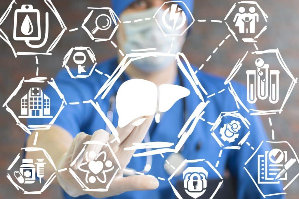 Arzt vor Visualisierung Leber mit Diagnose- und Therapieoptionen