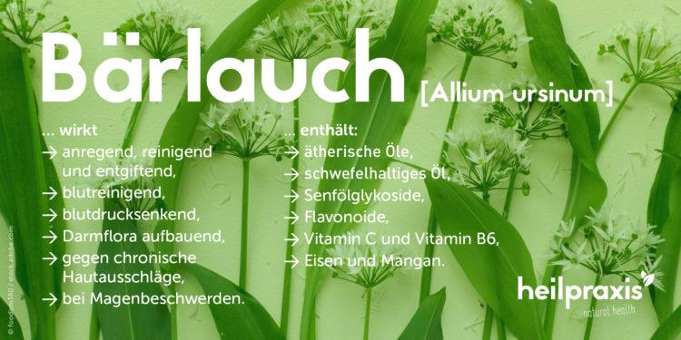 Barlach Übersichtsgrafik mit einer Auflistung der Inhaltsstoffe und Wirkung.
