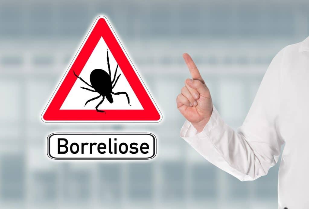 Arzt warnt mit Warnschild vor Zecken und Borreliose