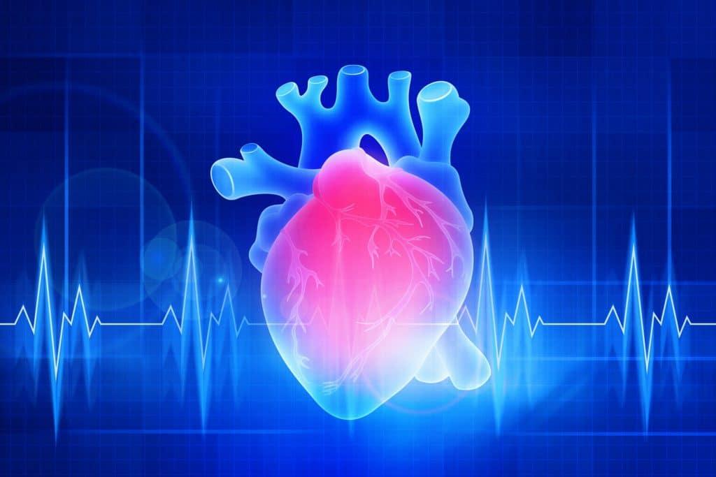 Grafik menschliches Herz und Herzströme.