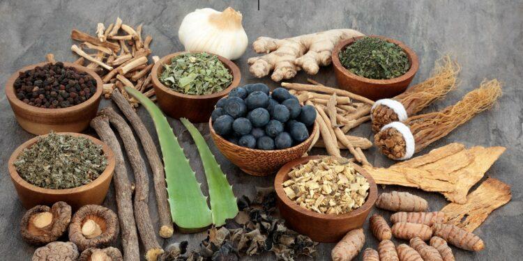 Auswahl verschiedener Heilkräuter und gesunder Lebensmittel wie Knoblauch, Ingwer, Zimt, Kurkuma