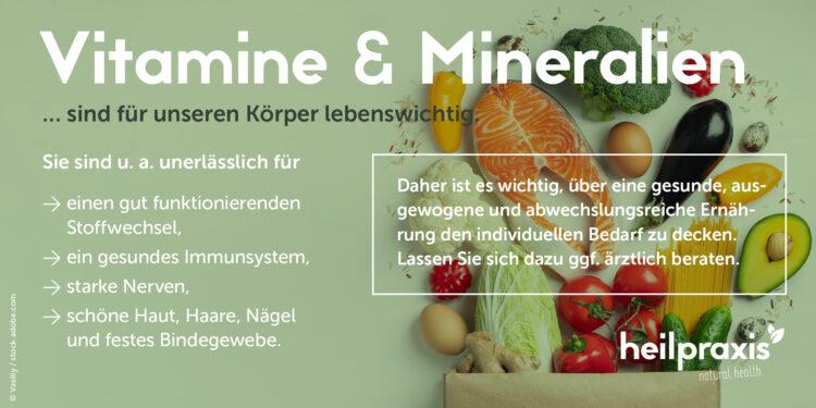 Übersichtsgrafik Vitamine und Mineralien