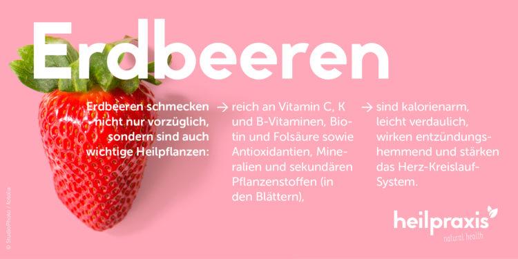 Erdbeer Abbildung mit einer Auflistung der Inhaltsstoffe und Wirkung