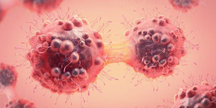 Eine Krebszelle teilt sich.