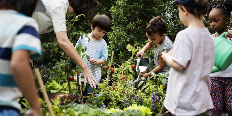 Kinder mit Lehrin bei der Schulstunde im Gemüsegarten.