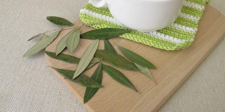 Auf einem Holzbrettchen steht eine Tasse Olivenblättertee neben einigen losen Olivenblättern.