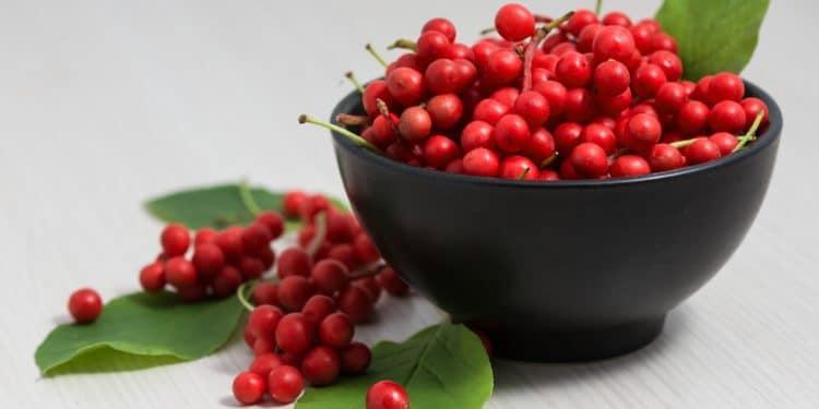 Schisandra-Beeren liegen in einer Schale und zusammen mit drei Blättern neben dieser auf dem Tisch.
