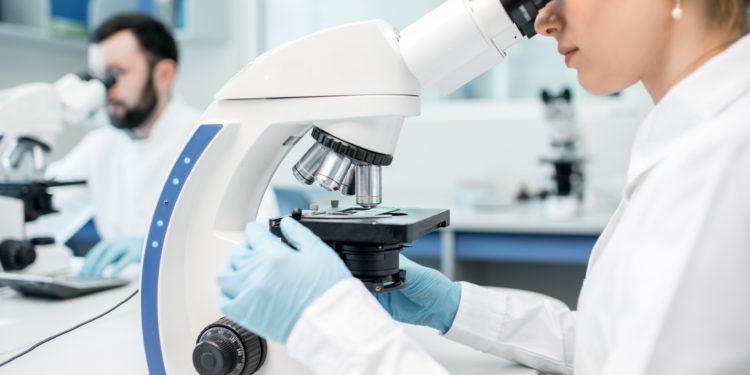 Zwei Wissenschaftler arbeiten in einem Labor an Mikroskopen.