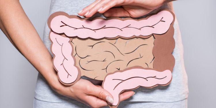 Eine Frau hält sich eine Pappe mit aufgemaltem Darm vor den Bauch.