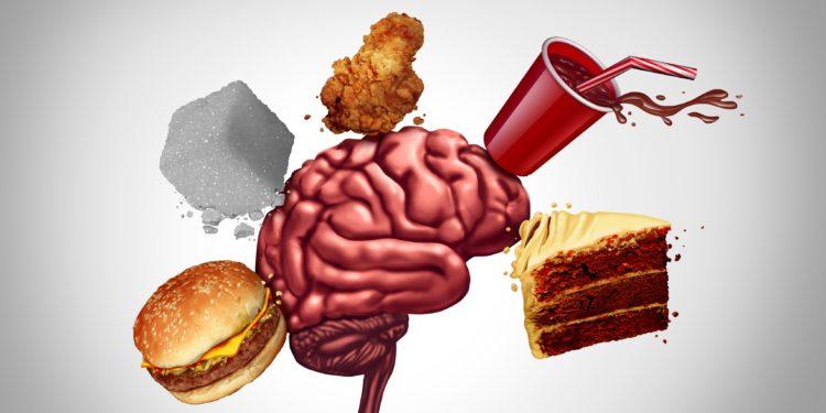 Ein menschliches Gehirn ist umgeben von kalorienreichen Nahrungsmitteln.