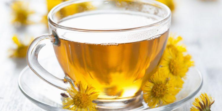 Eine Tasse mit Huflattich-Tee und mehrere Huflattichblüten.