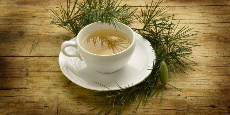 Eine Tasse mit Kiefernnadel-Tee auf einem Holztisch.