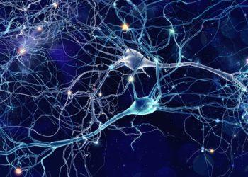Eine grafische Darstellung von vernetzten Nervenzellen im Gehirn.