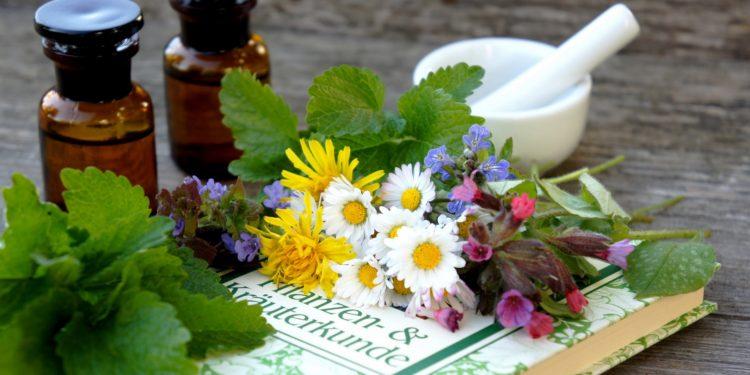 Verschiedene bunte Blüten liegen auf einem Buch über Heilpflanzen mit Mörser, Stößel und Arzneimittelfläschchen im Hintergrund