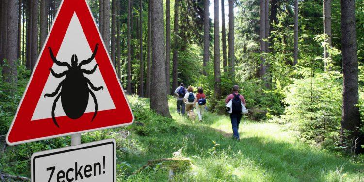 Schild mit Zeckenwarnung im Wald und dahinter einige Wanderer