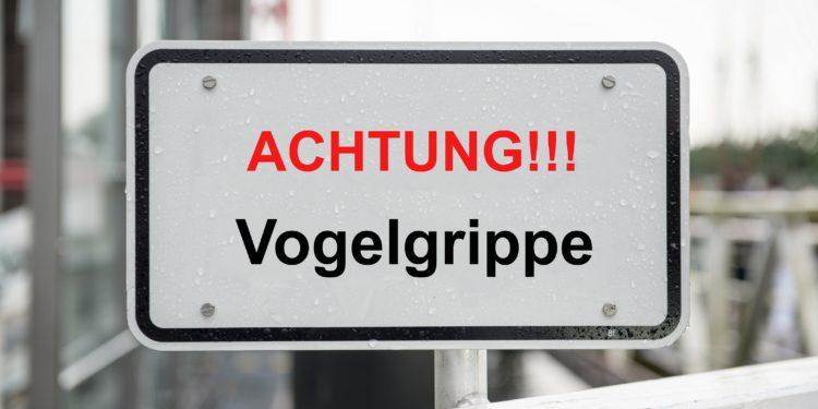 Schild mit der Aufschrift: Achtung!!! Vogelgrippe