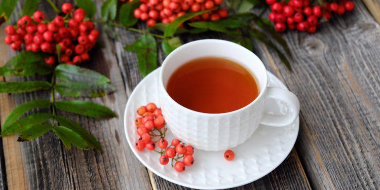 Eine Tasse mit Tee und Zweige mit Vogelbeeren auf einem Holztisch.