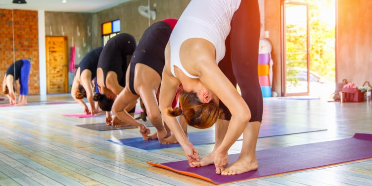 Mehrere Frauen auf Yogamatten praktizieren Yoga in sonnigem Studio
