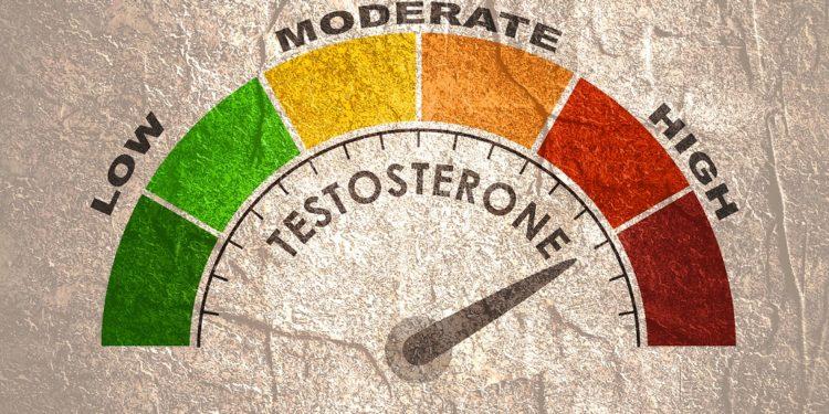 Auf einer Skala wird ein hoher Testosteronspiegel angezeigt