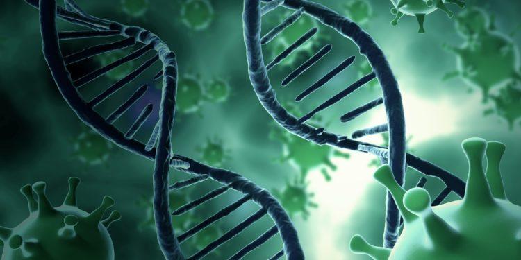 Eine grafische Darstellung von Viren, die zwei DNA-Stränge umgeben.
