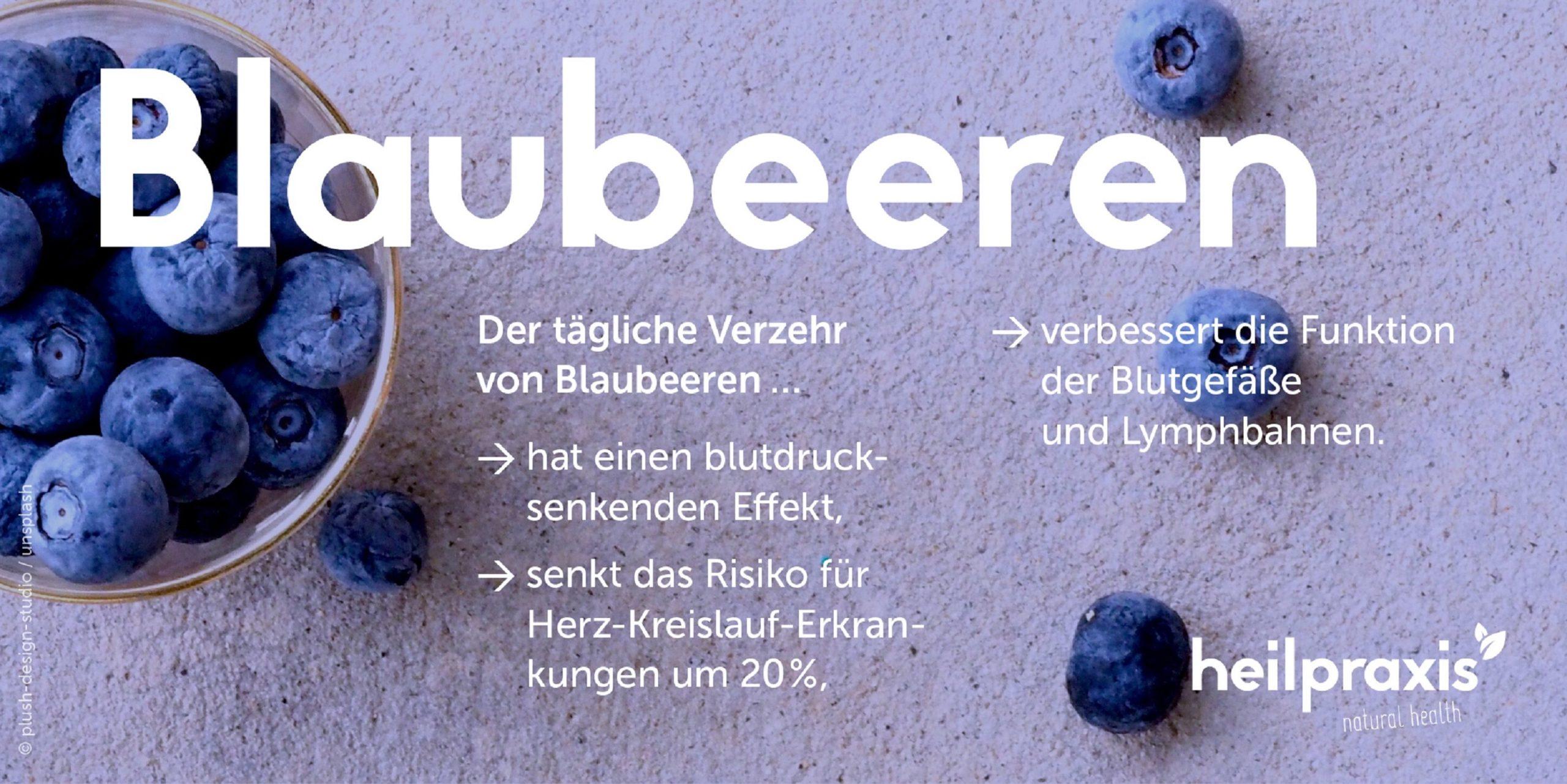 Blaubeere Übersichtsgrafik mit einer Auflistung der Inhaltsstoffe und Wirkungen.