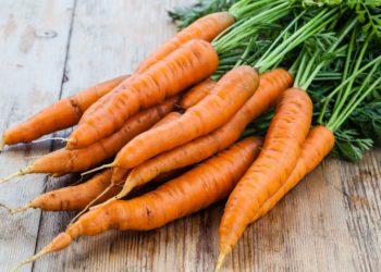 Ein Bund Karotten liegt auf einem Holztisch