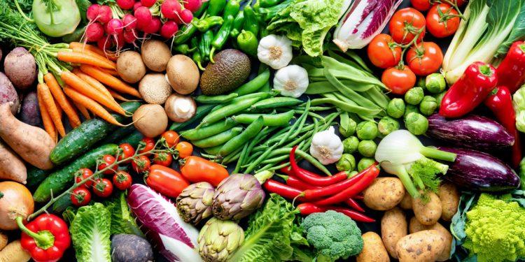 Eine riesige Auswahl an verschiedenen Gemüsesorten