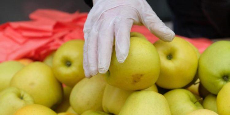 Eine Hand mit einem Einmalhandschuh greift nach einem Apfel.