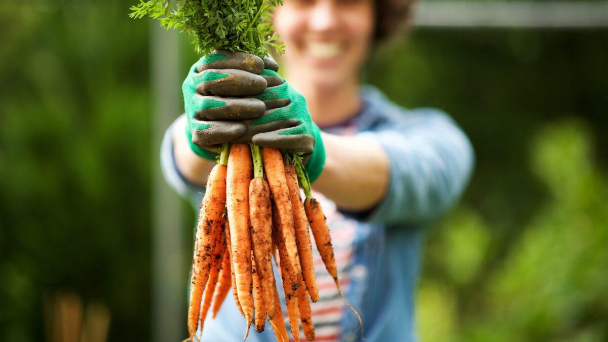 11+ Gesund und glücklich durch Gartenarbeit – Heilpraxis Bilder