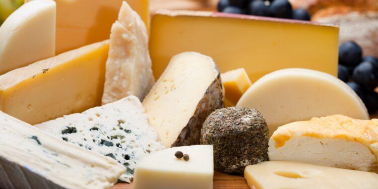 Eine Auswahl an verschiedenen Käsesorten