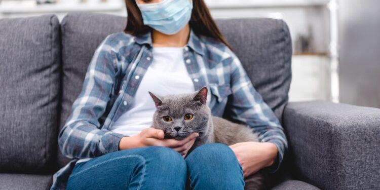 Eine Frau mit Atemschutzmaske hat eine Katze auf dem Schoß.
