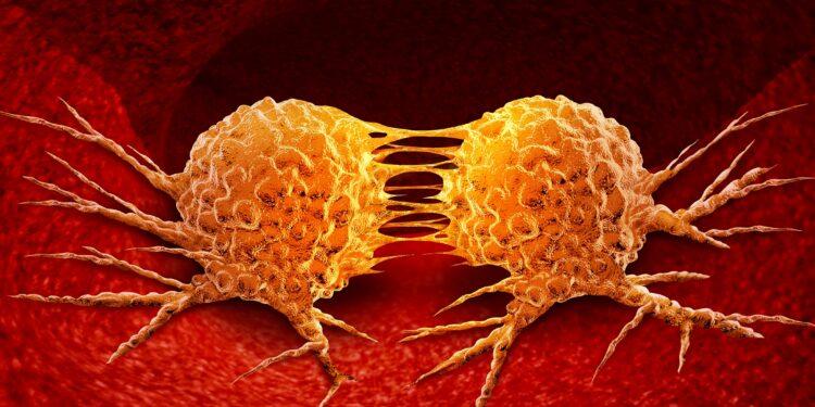 Eine grafische Darstellung von Krebszellen bei der Teilung.