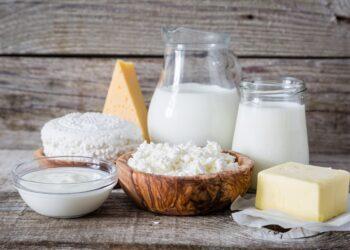 Ansammlung verschiedener Milchprodukte.