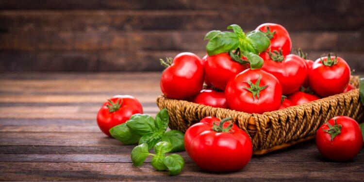 Frische Tomaten und Basilikum in einem Korb auf einem Holztisch