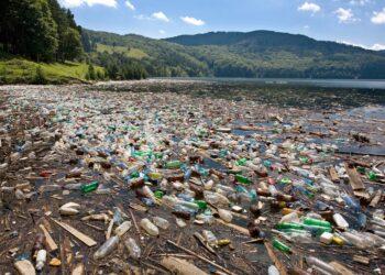Die Zerstörung der Umwelt hat dramatische Folgen. (Bild: Stéphane Bidouze/Stock.Adobe.com)