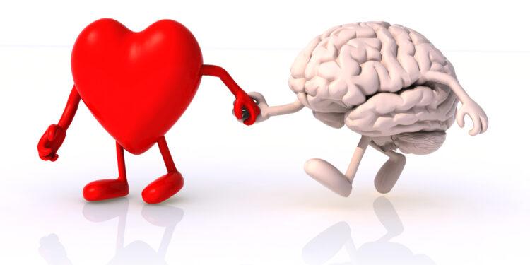 Eine grafische Darstellung eines Herzens und eines Gehirns, die Hand in Hand spazieren gehen.