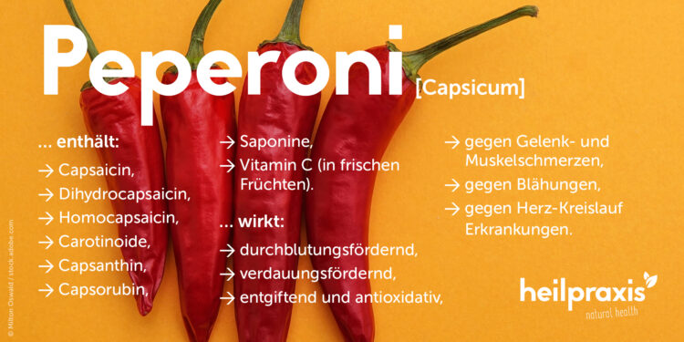 Übersicht der Inhaltsstoffe und Wirkungen von Peperoni