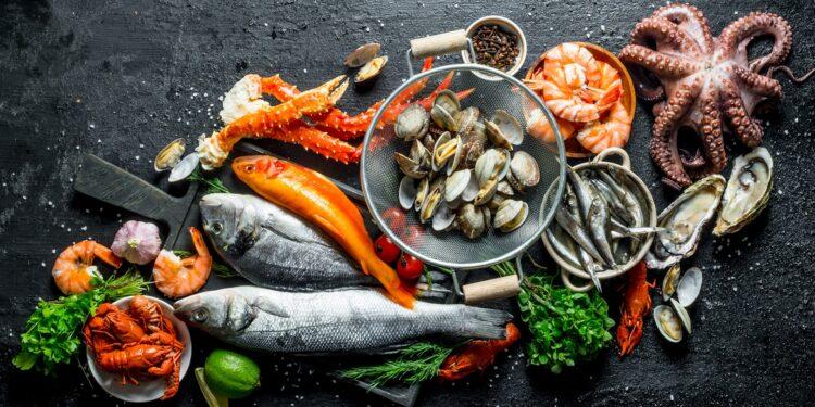 Eine Auswahl an Fischen und Meeresfrüchten vor einem dunklen Hintergrund.